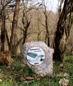 Erinnerungsstein an die Absprungstelle Otto Lilienthals
