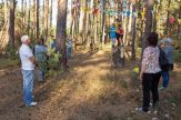 Tipidorf, Borkwalde, Herbstfest