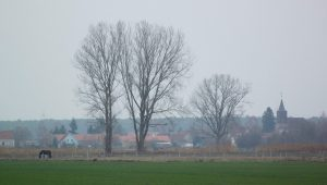 Schlunkendorf