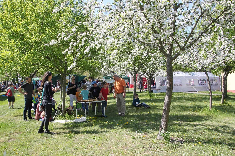 Frühlingsfest, Tourismusverein Zauche-Fläming, Amt Brück, TZF