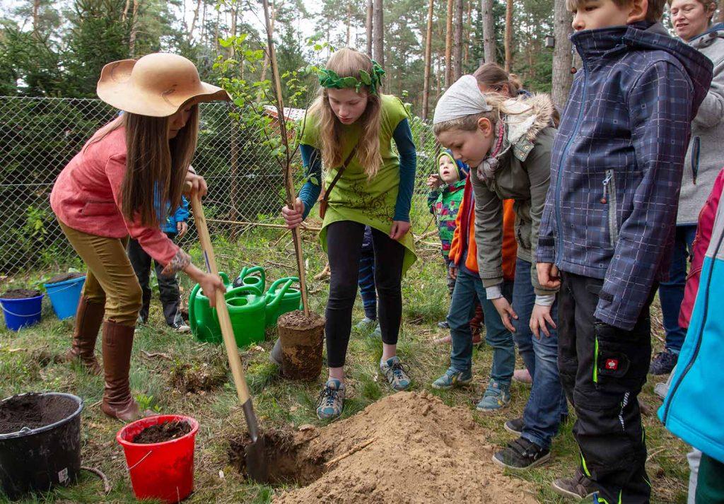 Borkwalde, Flatter-Ulme, Baum des Jahres, Baumkönigin, Caroline Hensel, Baumprinzessin, Tipidorf, Kulturverein Zauche