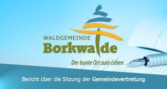 Bericht-GV-Borkwalde