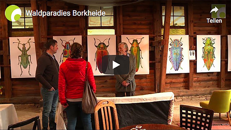 FK Waldparadies Borkheide