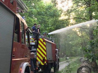 Beelitz, Feuerwehr, Löscharbeiten, Siebenbruederweg, Feuerwehr Beelitz