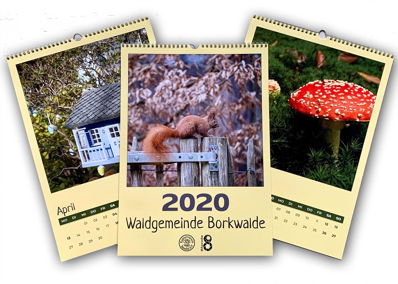 Borkwalder Kalender 2020