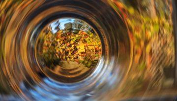 Herbst in Borkwalde durchs Glas gesehen