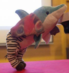 Delphin-Zebra-Schmetterling