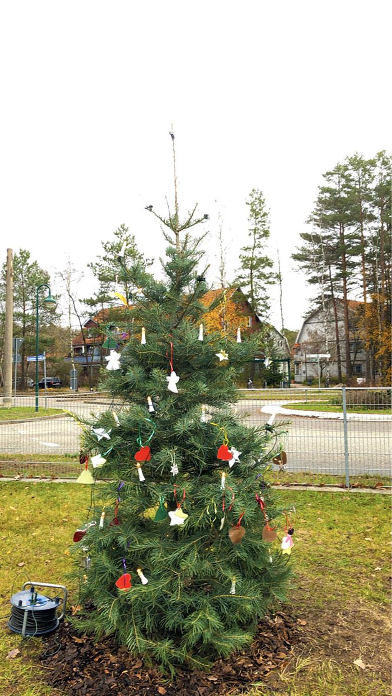 Der geschmückte Weihnachtsbaum