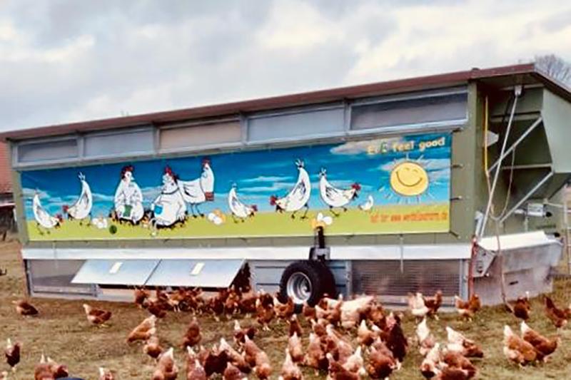 Eier von der Weidelandfarm am Riebener See