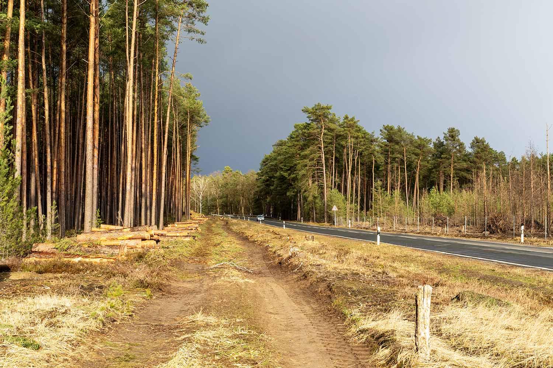 Radweg-Klaistow-Glindow-03