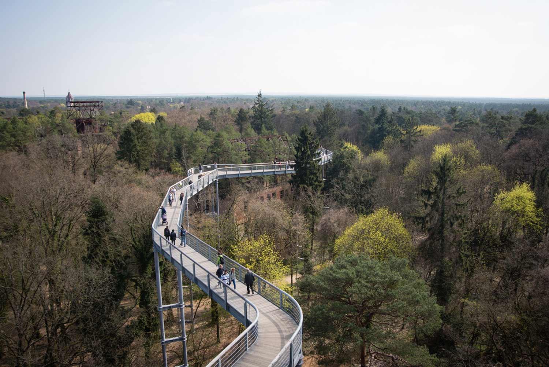 Baumkronenpfad, Baum&Zeit, Beelitz-Heilstätten