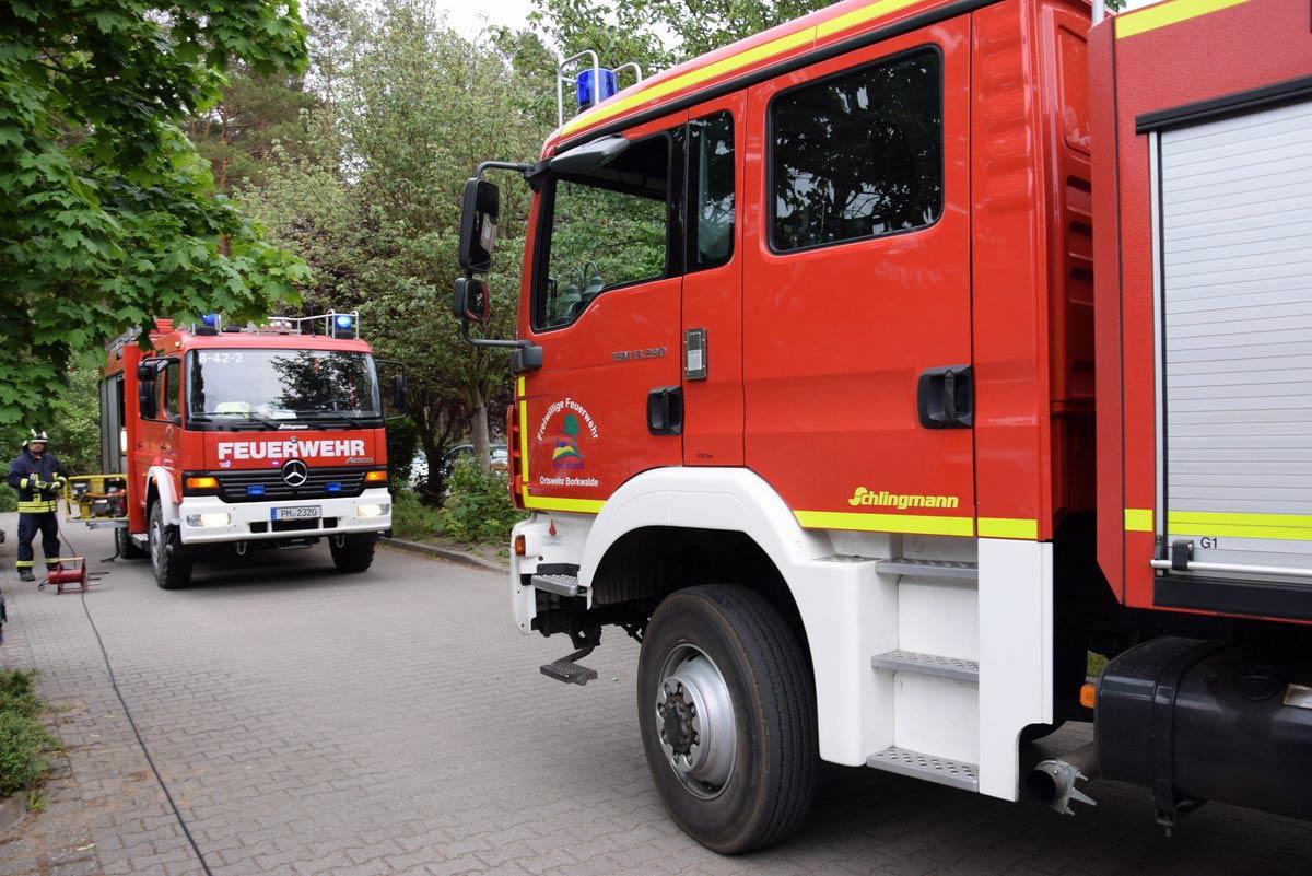 Feuerwehr, Borkwalde