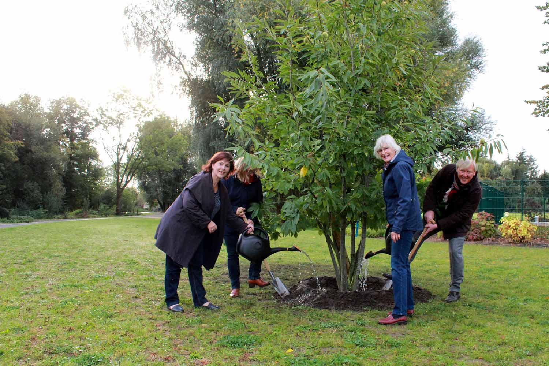 Beelitz, Baumpflanzung, Kinder