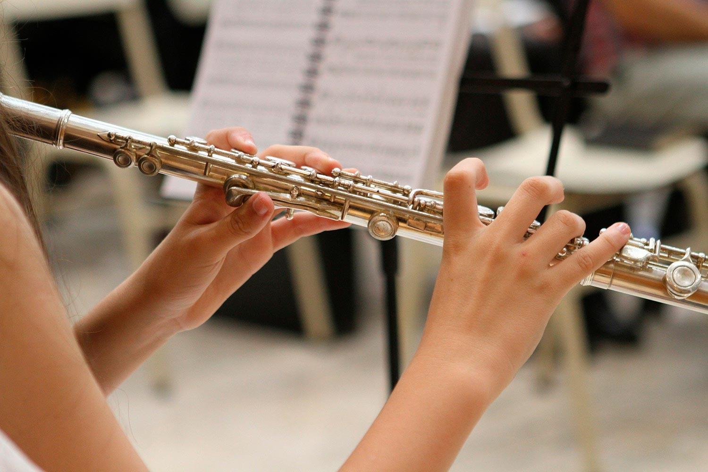 Musik-Jazz-Floete
