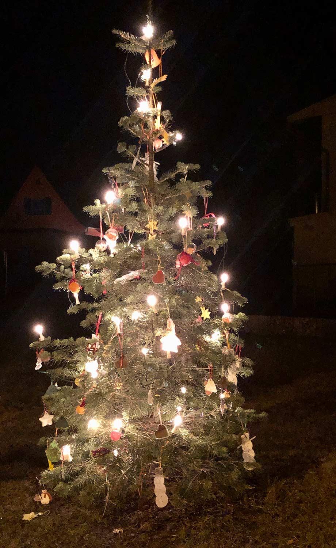 Borkwalde-Weihnachtsbaum-2020