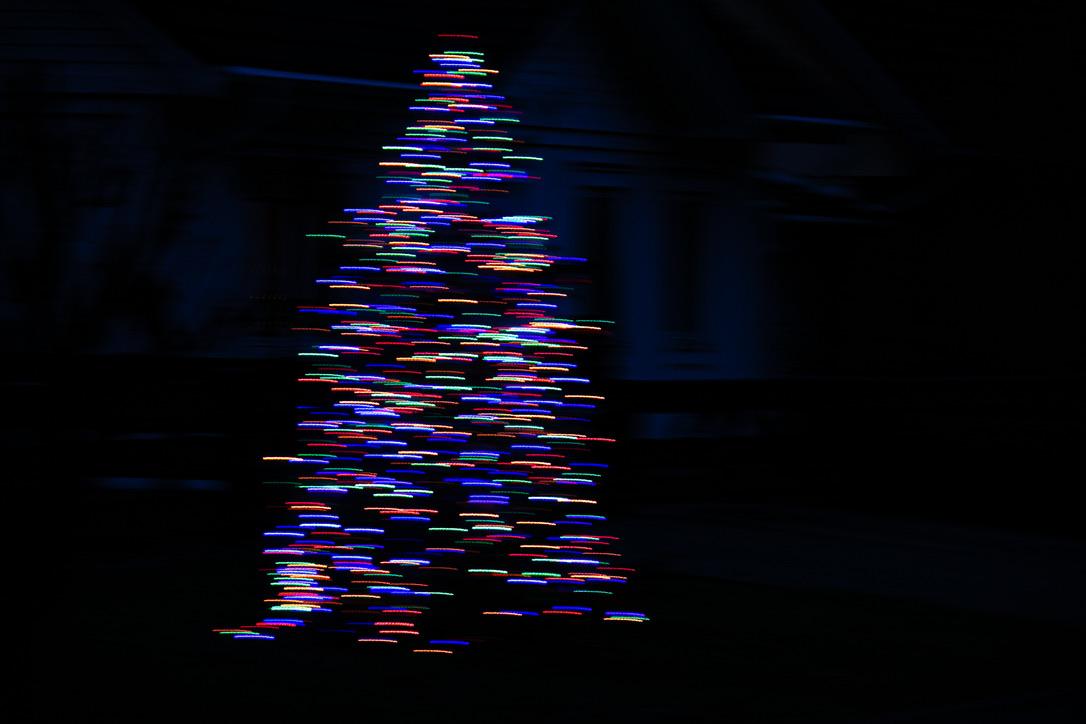 Ramona Gardosch, Weihnachtsbaum