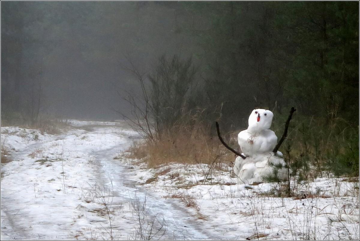 Welttag des Schneemanns 2021