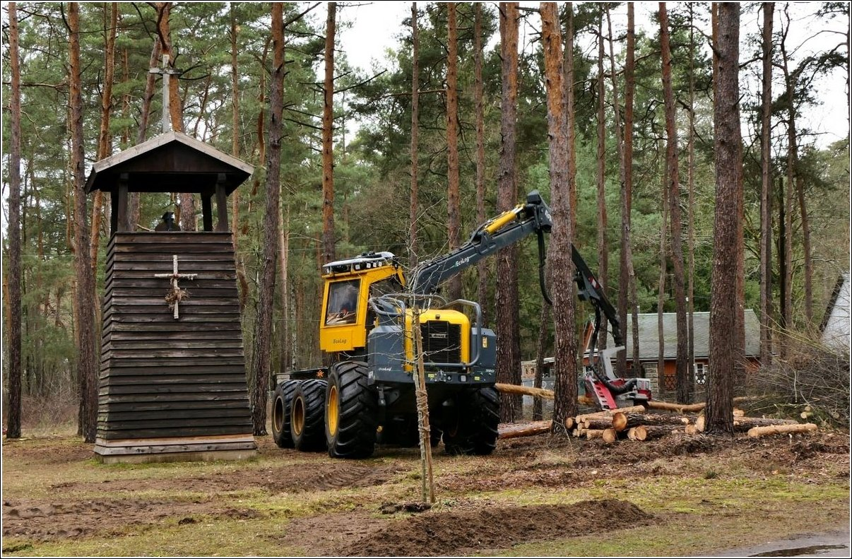 Borkwalde: Ein neuer Wald soll entstehen!