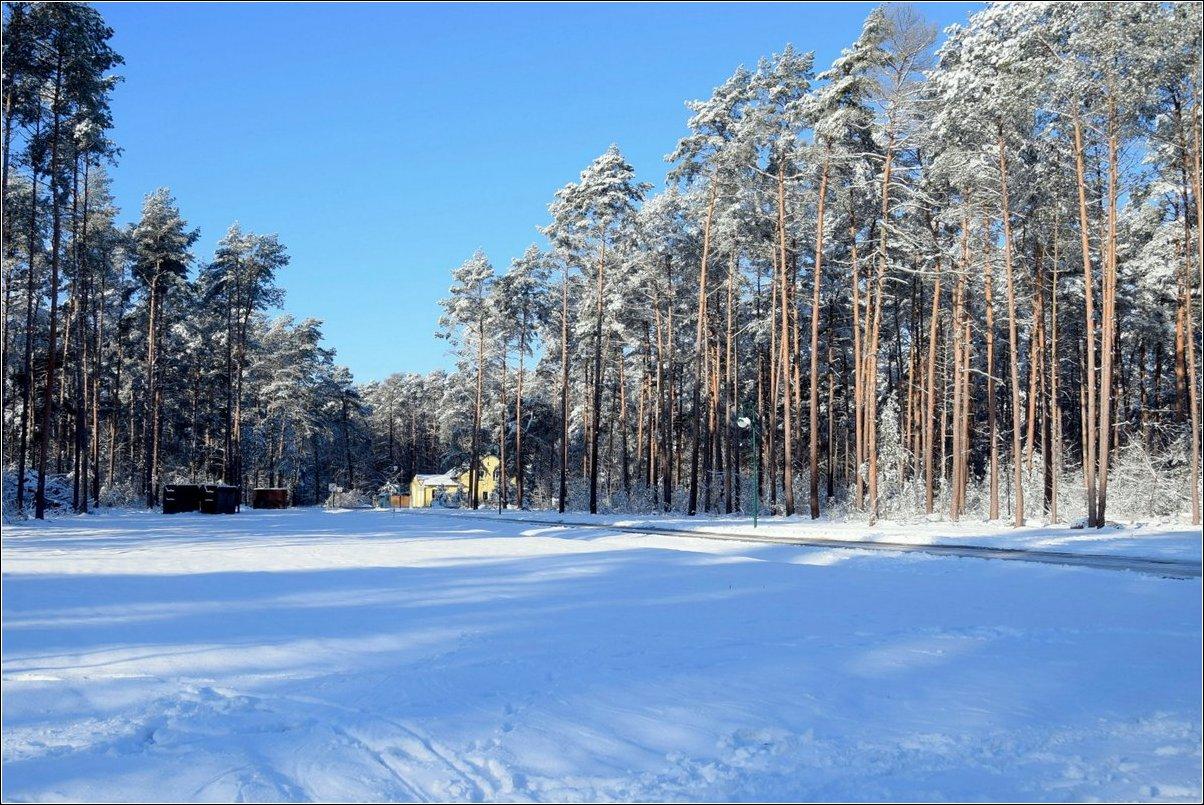 Borkwalde:   Hinaus in den Schnee