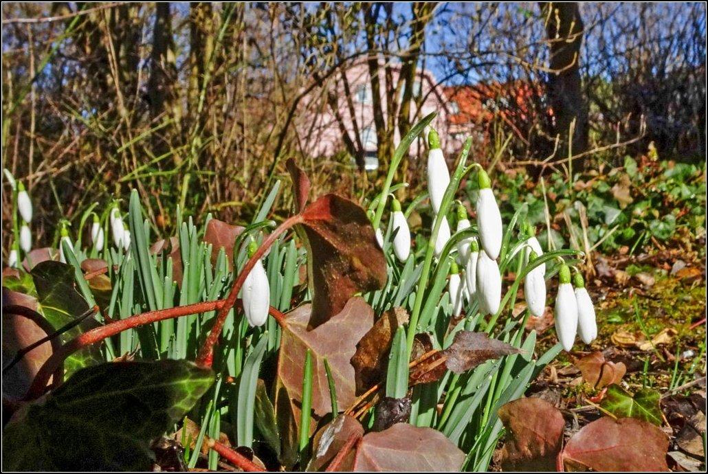Alle warten auf sonnige Frühlingstage