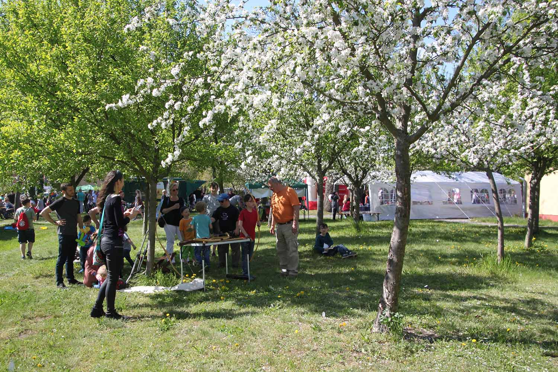 Brück, Frühlingsfest