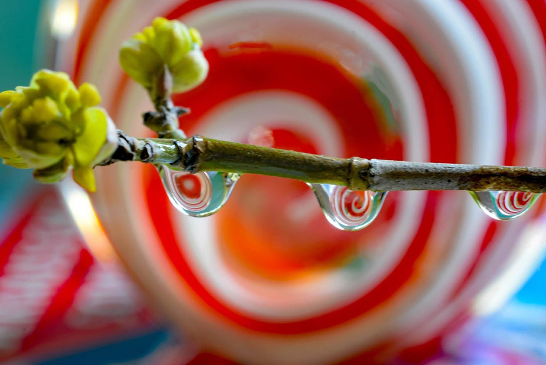 Wassertropfen, Blende 8, Borkwalde