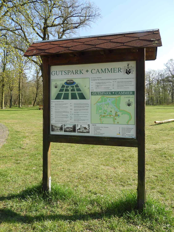 Story-Gutspark-Cammer-Artikel